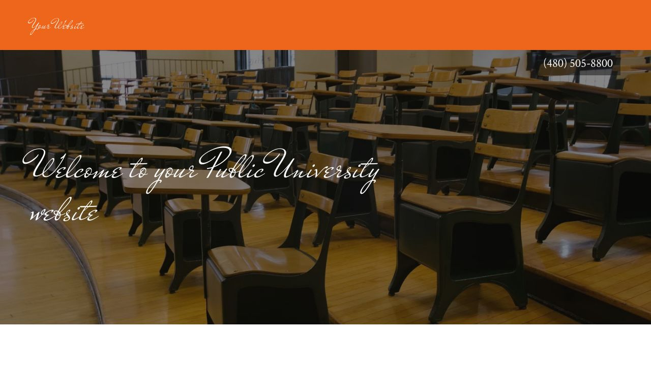 Public University Website: Example 16