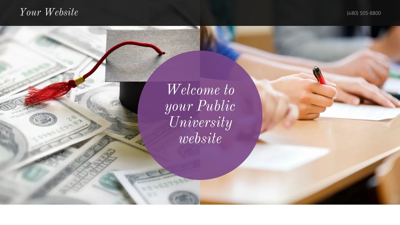 Public University Website: Example 18