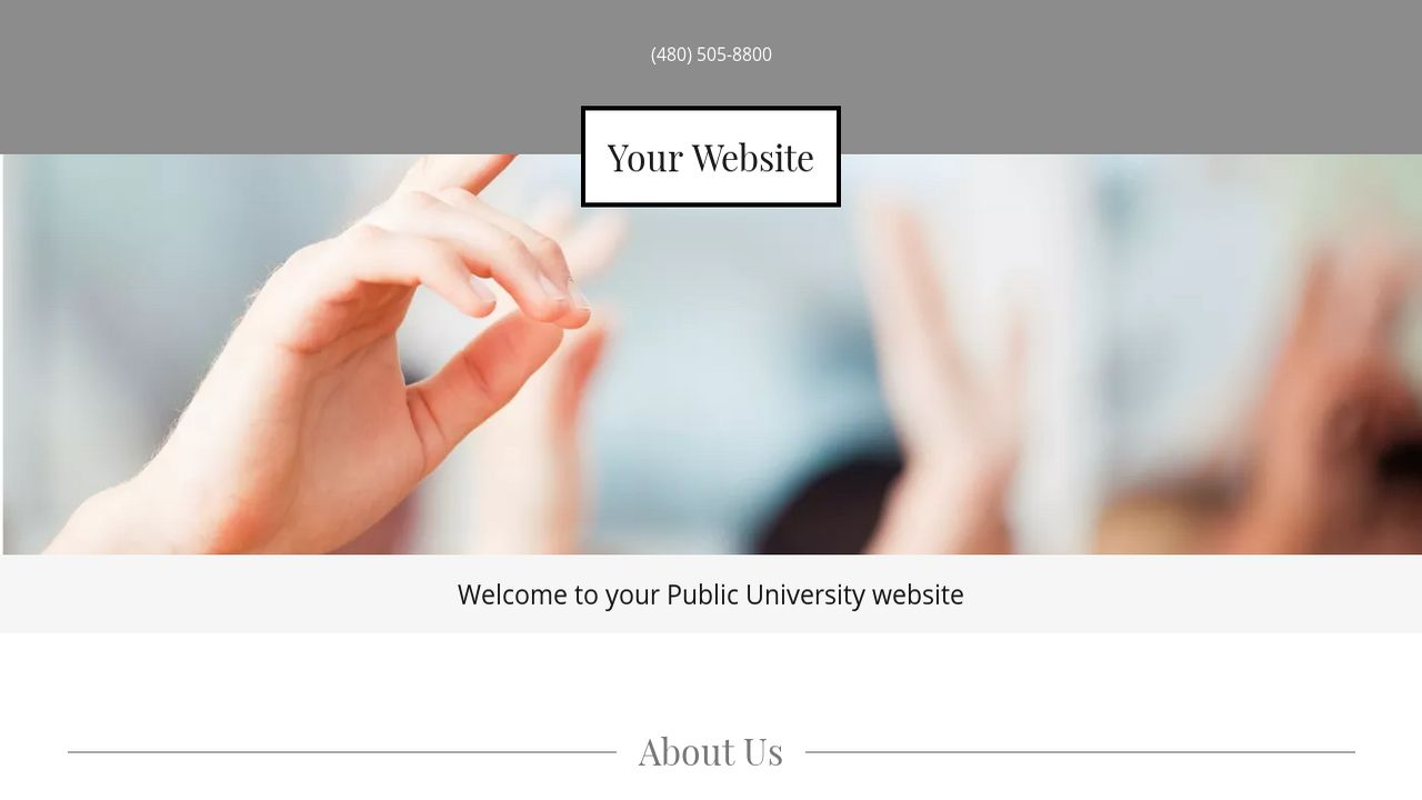 Public University Website: Example 3