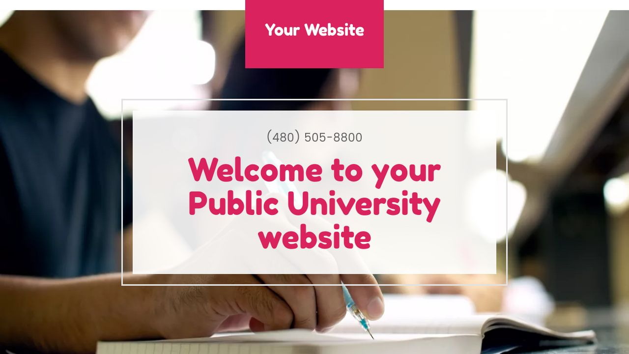 Public University Website: Example 5