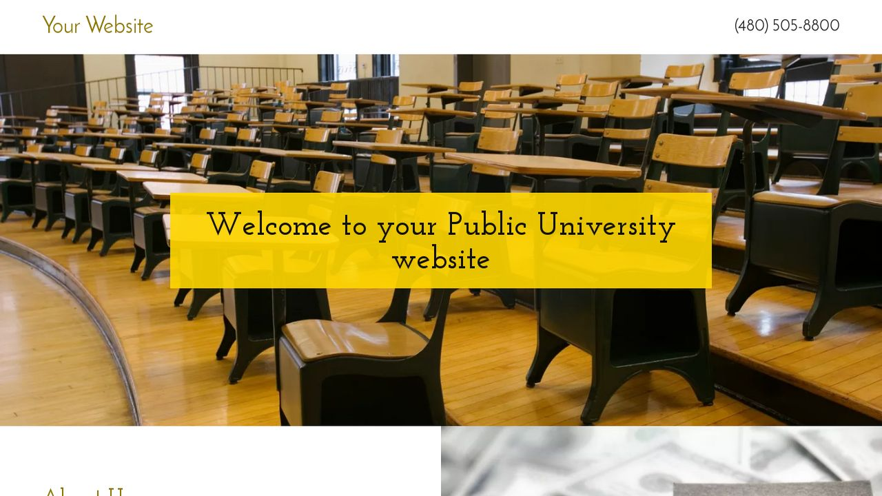 Public University Website: Example 7