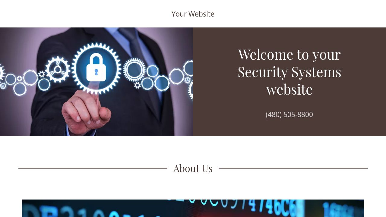 Security Systems Website: Example 13