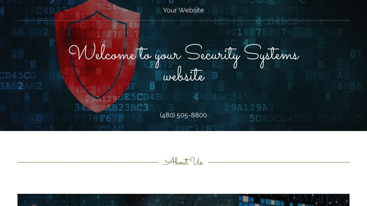 Security Systems Website: Example 5