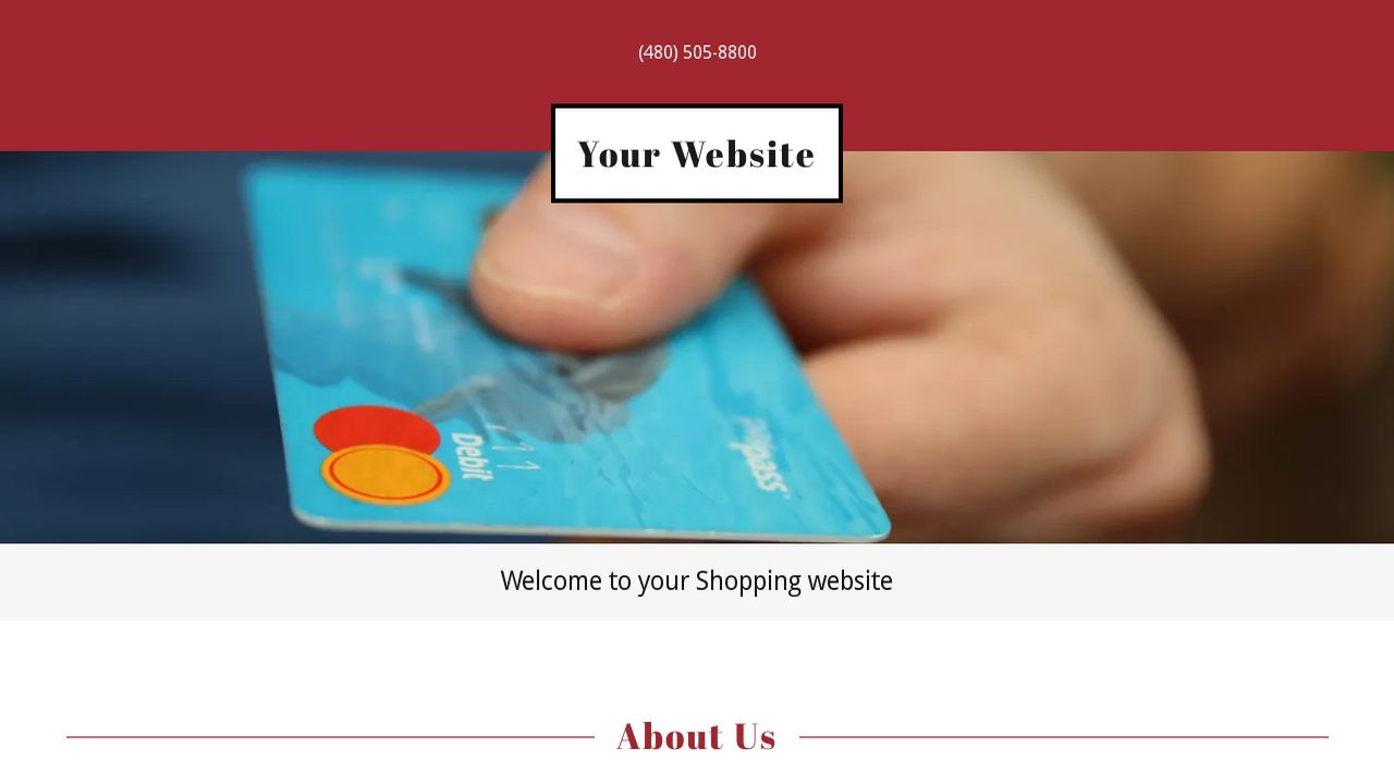 Shopping Website: Example 1