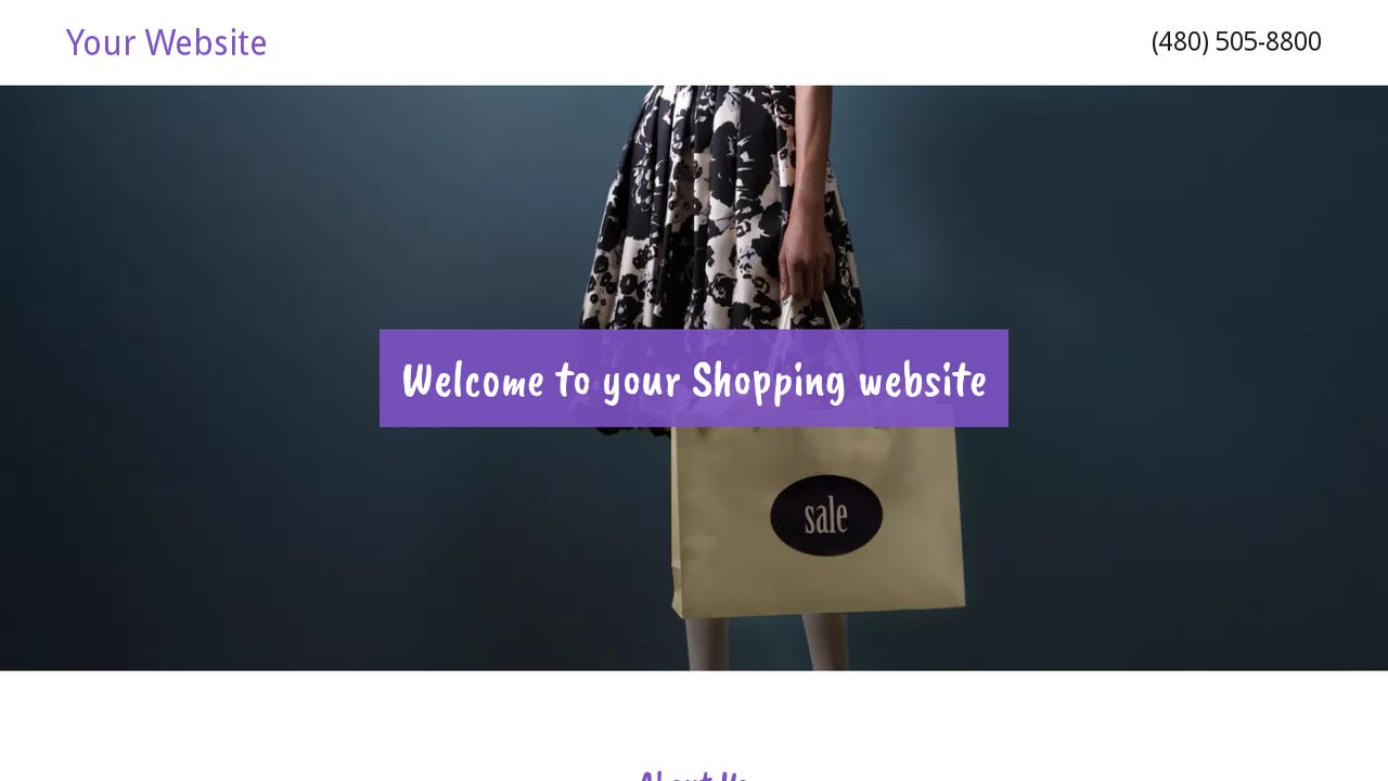 Shopping Website: Example 17