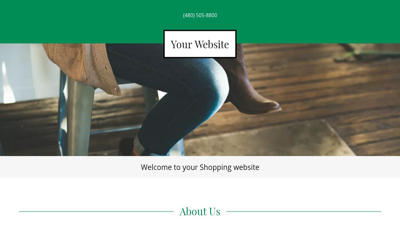 Shopping Website: Example 8