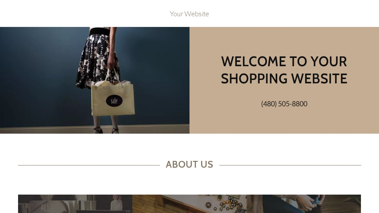 Shopping Website: Example 9