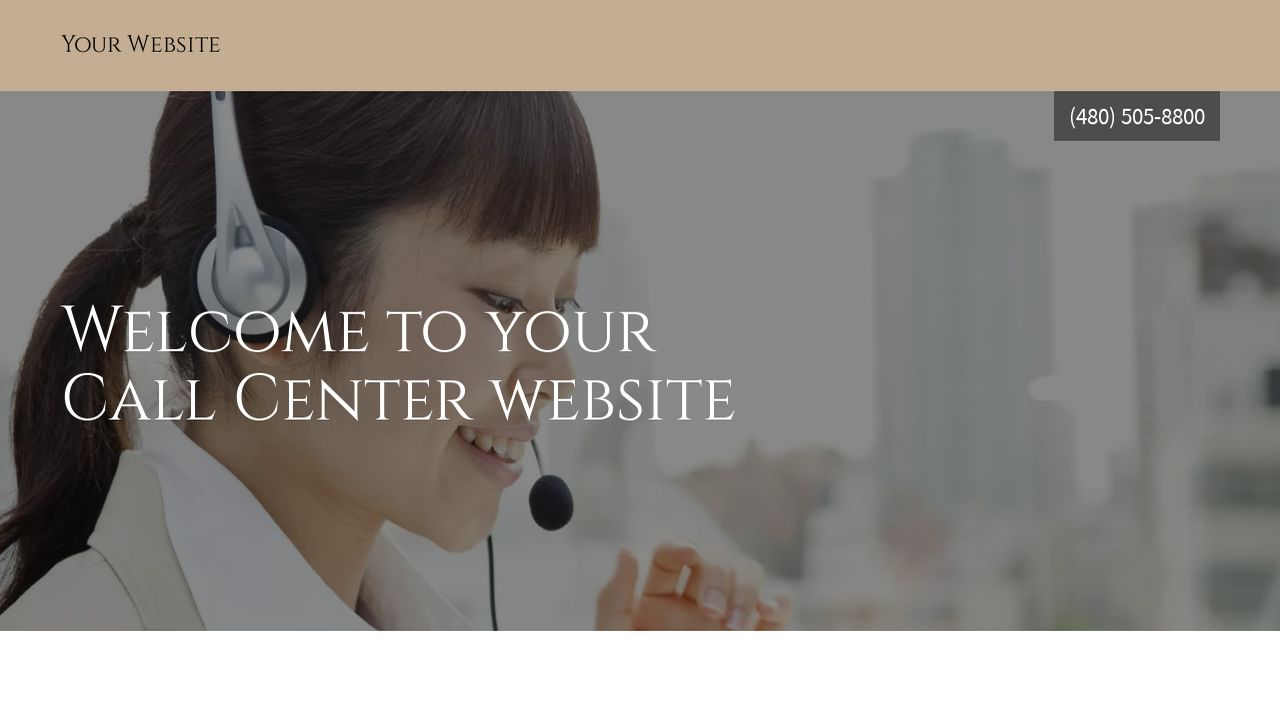 Call Center Website: Example 16