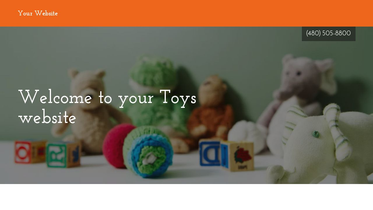 Toys Website: Example 14