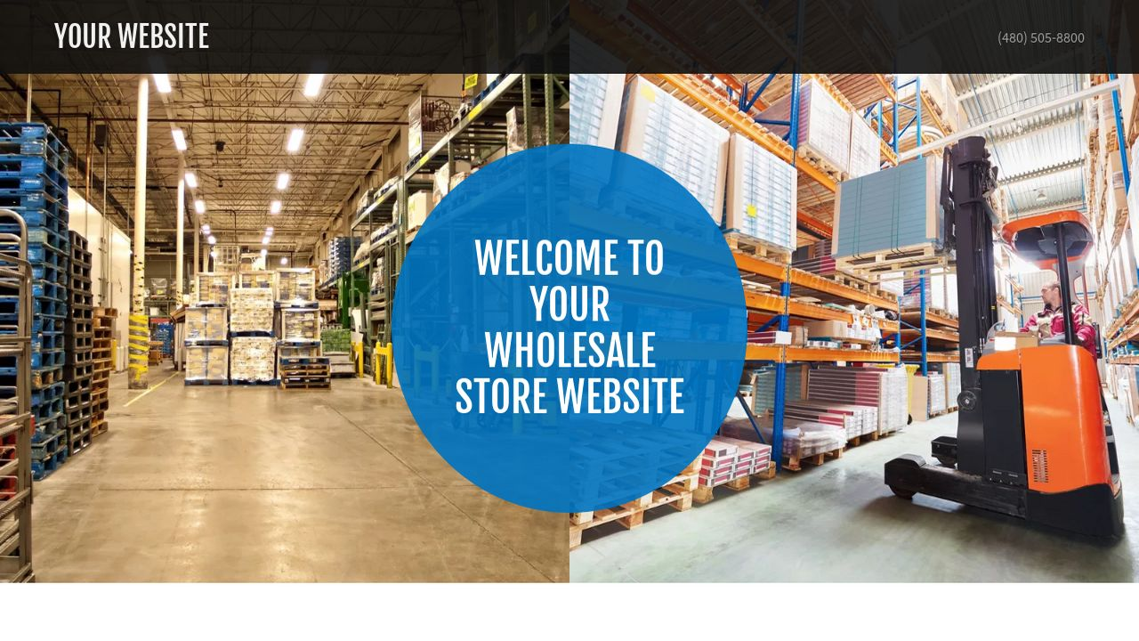Wholesale Store Website: Example 10