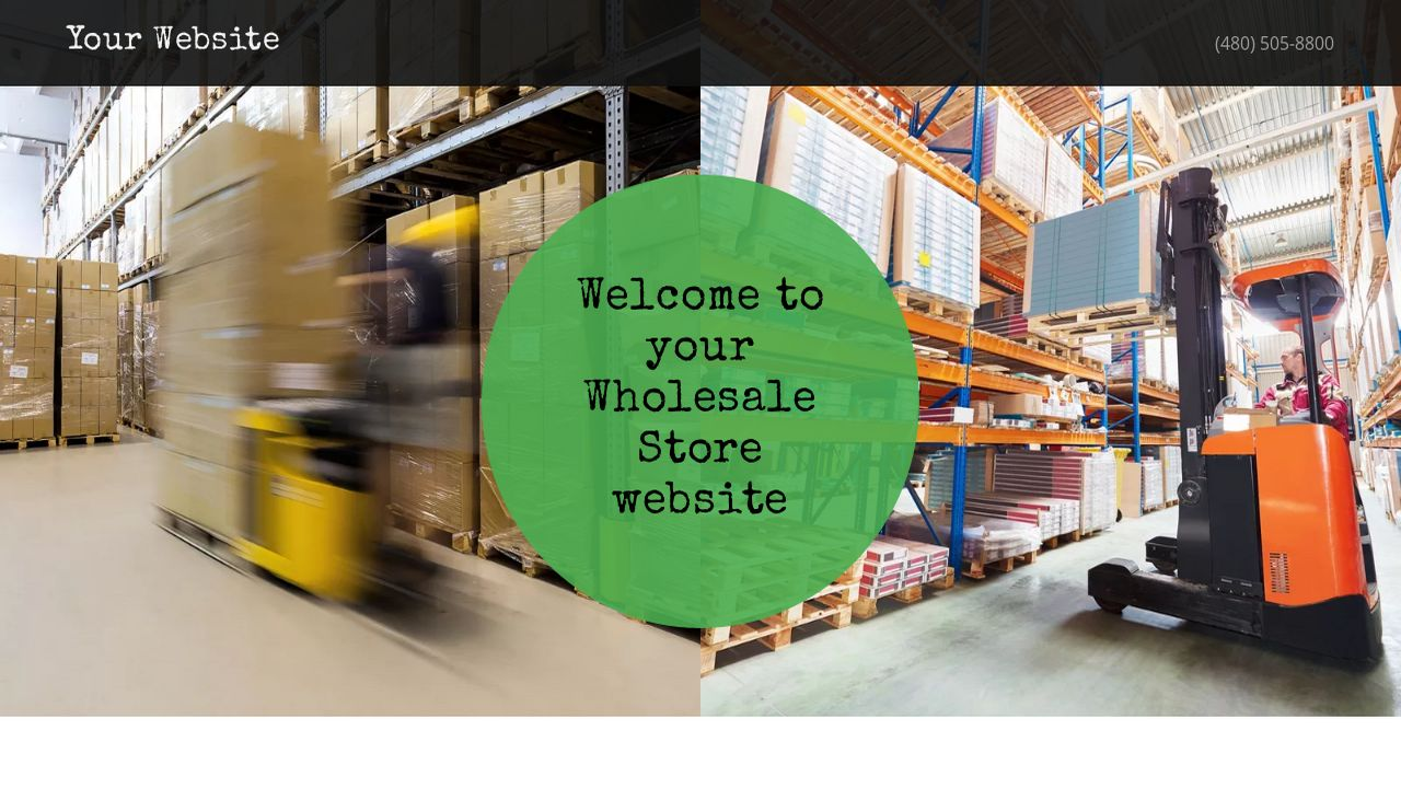 Wholesale Store Website: Example 3