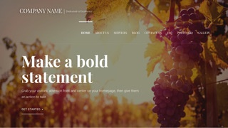 Velux Brewing and Winemaking Supplies WordPress Theme