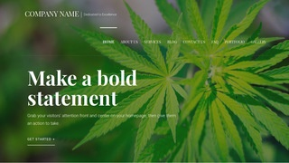Velux Cannabis Clinic WordPress Theme